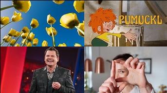BR Fernsehen
